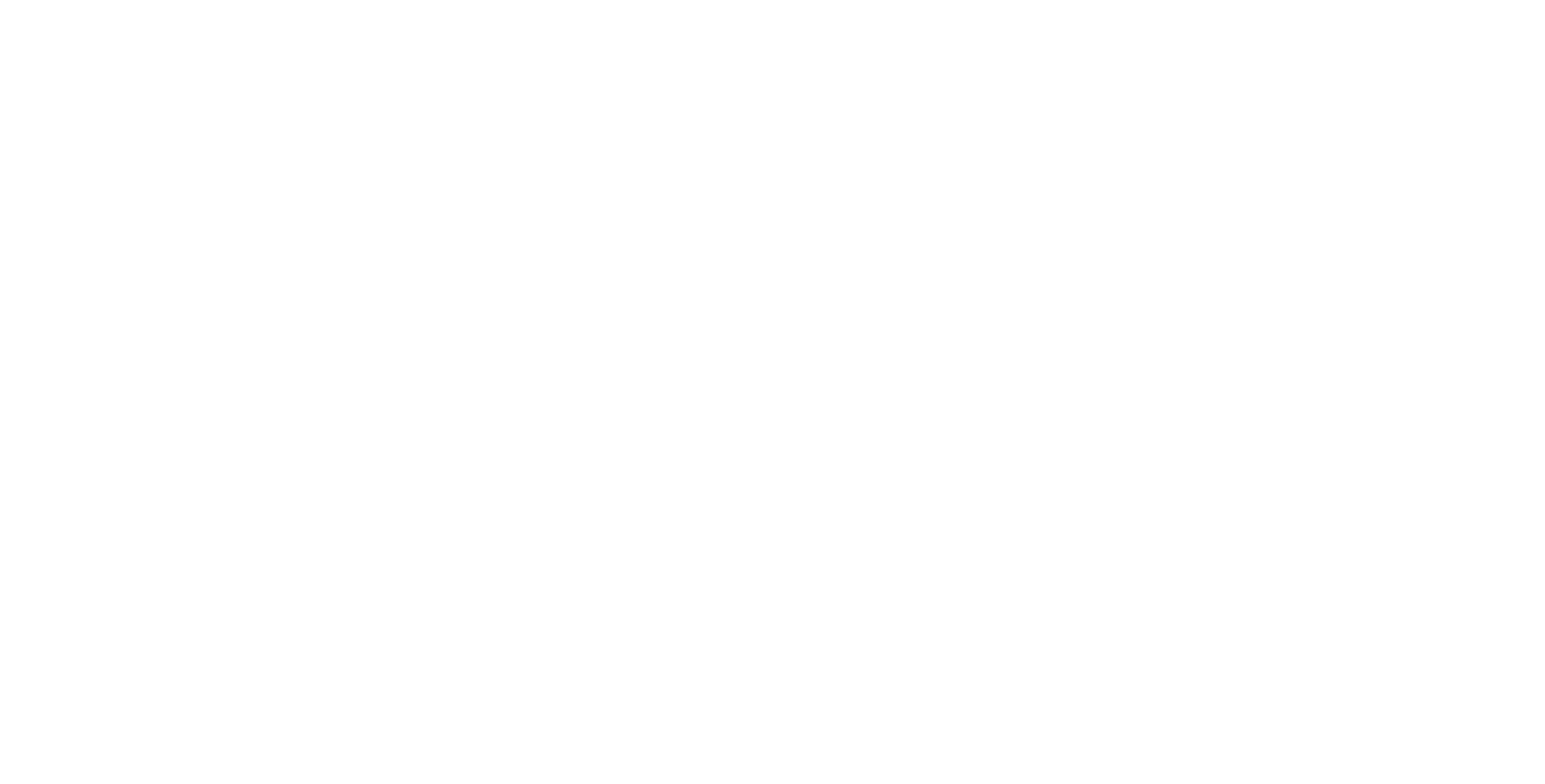 Wizard Screen Solutions Logo